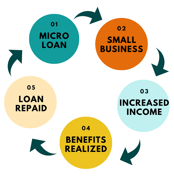 Infographic about micro loans.